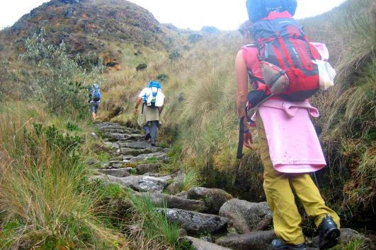 Inca Trail Trek Tours
