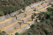 Terraces at Choquequirao Trek