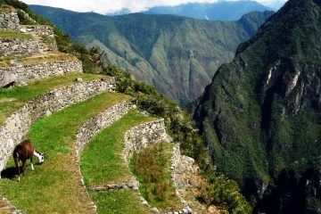 Machu Picchu Expedition